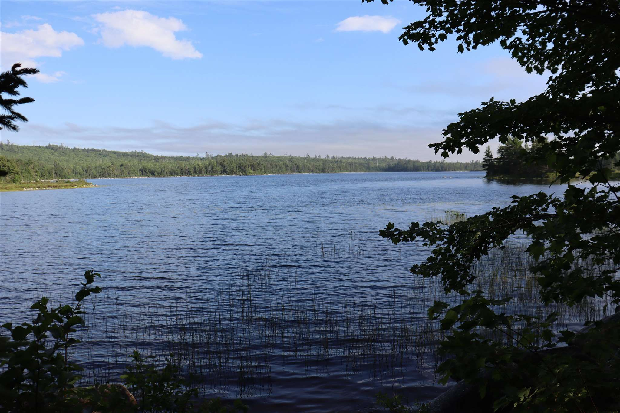 Photo 3: Photos: Lot 5 Mersey Road in East River: 405-Lunenburg County Vacant Land for sale (South Shore)  : MLS®# 202117014
