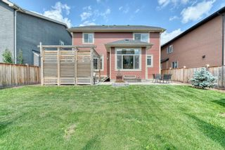 Photo 40: 162 Aspenmere Drive: Chestermere Detached for sale : MLS®# A1014291