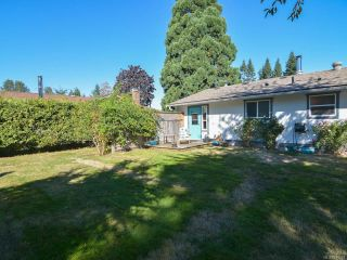 Photo 41: 3797 MEREDITH DRIVE in ROYSTON: CV Courtenay South House for sale (Comox Valley)  : MLS®# 771388