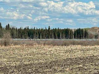 Photo 36: Twp 604 Rg Rd 244: Rural Westlock County Rural Land/Vacant Lot for sale : MLS®# E4223747