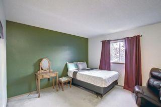 Photo 19: 8 Taradale Close NE in Calgary: Taradale Detached for sale : MLS®# A1148577