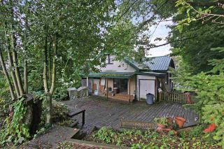Photo 10: 2602 CAMPBELL Avenue in Abbotsford: Central Abbotsford House for sale : MLS®# R2524225