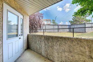 Photo 40: 25 8403 164 Avenue in Edmonton: Zone 28 Townhouse for sale : MLS®# E4253838