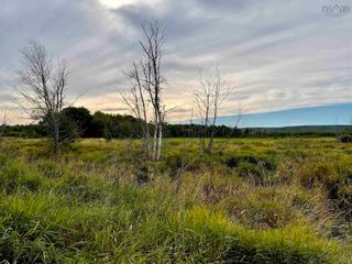 Photo 8: Lot Brooklyn Street in North Kingston: 404-Kings County Vacant Land for sale (Annapolis Valley)  : MLS®# 202123863