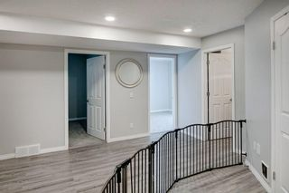 Photo 23: 21 CITADEL CREST Place NW in Calgary: Citadel Detached for sale : MLS®# C4197378