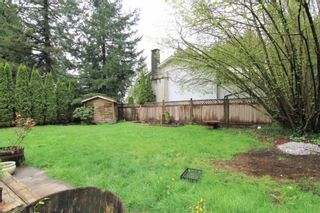 Photo 14: 11733 GRAVES STREET in Maple Ridge: Southwest Maple Ridge House for sale : MLS®# R2360689