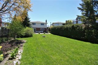Photo 18: 3 Illingworth Court in Aurora: Aurora Heights House (Backsplit 4) for sale : MLS®# N3802187
