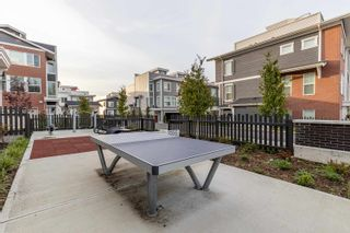 """Photo 39: 71 8371 202B Street in Langley: Willoughby Heights Townhouse for sale in """"Kensington Lofts"""" : MLS®# R2624077"""