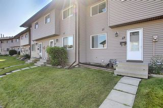 Photo 3: 55 6020 Temple Drive NE in Calgary: Temple Row/Townhouse for sale : MLS®# A1140394
