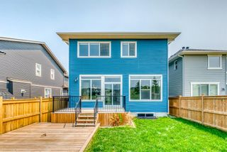 Photo 45: 292 Nolancrest Heights NW in Calgary: Nolan Hill Detached for sale : MLS®# A1130520