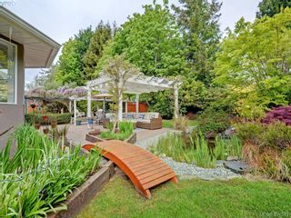 Photo 17: 788 Wesley Crt in VICTORIA: SE Cordova Bay House for sale (Saanich East)  : MLS®# 787085