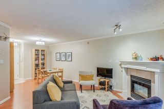 Photo 32: 102 1025 Meares St in Victoria: Vi Downtown Condo for sale : MLS®# 858477