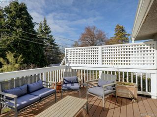 Photo 15: 3232 Frechette St in VICTORIA: SE Camosun House for sale (Saanich East)  : MLS®# 780628