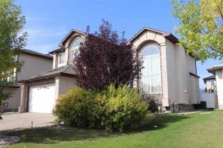 Photo 50: 417 OZERNA Road in Edmonton: Zone 28 House for sale : MLS®# E4214159