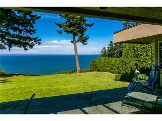 Photo 9: 1489 126A ST in Surrey: Crescent Bch Ocean Pk. House for sale (South Surrey White Rock)  : MLS®# F1316867