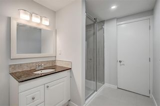 Photo 25: 832 Macleay Road NE in Calgary: Mayland Heights Detached for sale : MLS®# A1125875