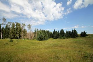 Photo 20: Rg Rd 120 Twp Rd 610: Rural St. Paul County Rural Land/Vacant Lot for sale : MLS®# E4263791