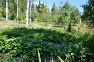 Photo 15: 455 Albers Road, in Lumby: Agriculture for sale : MLS®# 10235228
