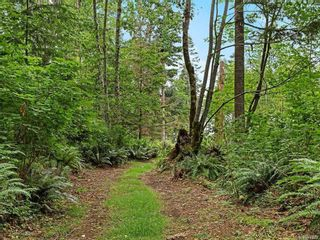 Photo 38: Lot 2 Eagles Dr in : CV Courtenay North Land for sale (Comox Valley)  : MLS®# 869395