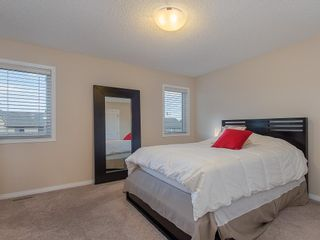 Photo 20: 46 WALDEN Court SE in Calgary: Walden Detached for sale : MLS®# C4238611