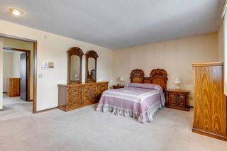 Photo 18: 147 Templevale Place NE in Calgary: Temple Detached for sale : MLS®# A1144568
