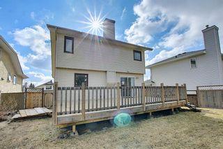 Photo 37: 30 MACEWAN RIDGE Place in Calgary: MacEwan Glen Detached for sale : MLS®# A1092445