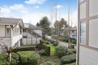 "Photo 20: 209 6363 121ST Street in Surrey: Panorama Ridge Condo for sale in ""The Regency"" : MLS®# R2037134"