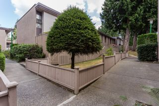 """Photo 28: 49 13809 102 Avenue in Surrey: Whalley Townhouse for sale in """"The Meadows"""" (North Surrey)  : MLS®# F1447952"""