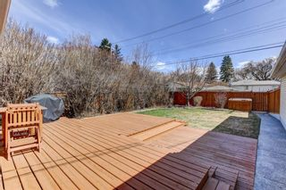 Photo 28: 724 35A Street NW in Calgary: Parkdale Detached for sale : MLS®# A1100563