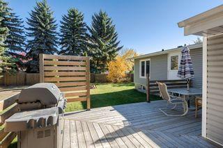 Photo 32: 16628 78 Avenue in Edmonton: Zone 22 House for sale : MLS®# E4265015
