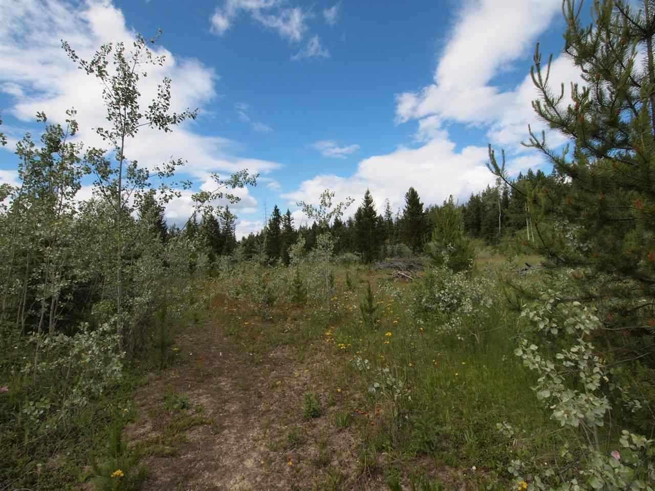Photo 12: Photos: 4573 BAKKEN Road: Forest Grove Land for sale (100 Mile House (Zone 10))  : MLS®# R2377308