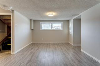 Photo 43: 3812 49 Street NE in Calgary: Whitehorn Detached for sale : MLS®# A1054455