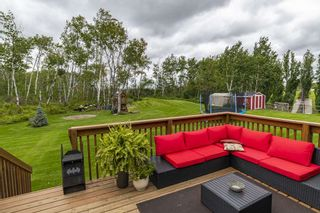 Photo 20: 62414 RR 420A: Rural Bonnyville M.D. House for sale : MLS®# E4227233