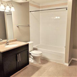 Photo 33: 8353 SHASKE Crescent in Edmonton: Zone 14 House for sale : MLS®# E4262275