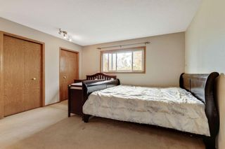 Photo 17: 87 Hawkford Crescent NW in Calgary: Hawkwood Detached for sale : MLS®# A1114162