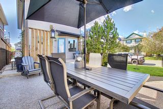 Photo 44: 44 CRANBERRY Way SE in Calgary: Cranston Detached for sale : MLS®# A1029590