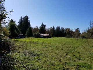 Photo 4: 30189 OLD YALE Road in Abbotsford: Aberdeen House for sale : MLS®# R2412392