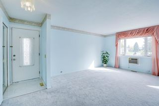 Photo 22: 3307 39 Street SE in Calgary: Dover Detached for sale : MLS®# A1148179