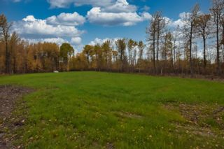 Photo 6: #9 North Pigeon Lake Estates: Rural Wetaskiwin County Rural Land/Vacant Lot for sale : MLS®# E4265016