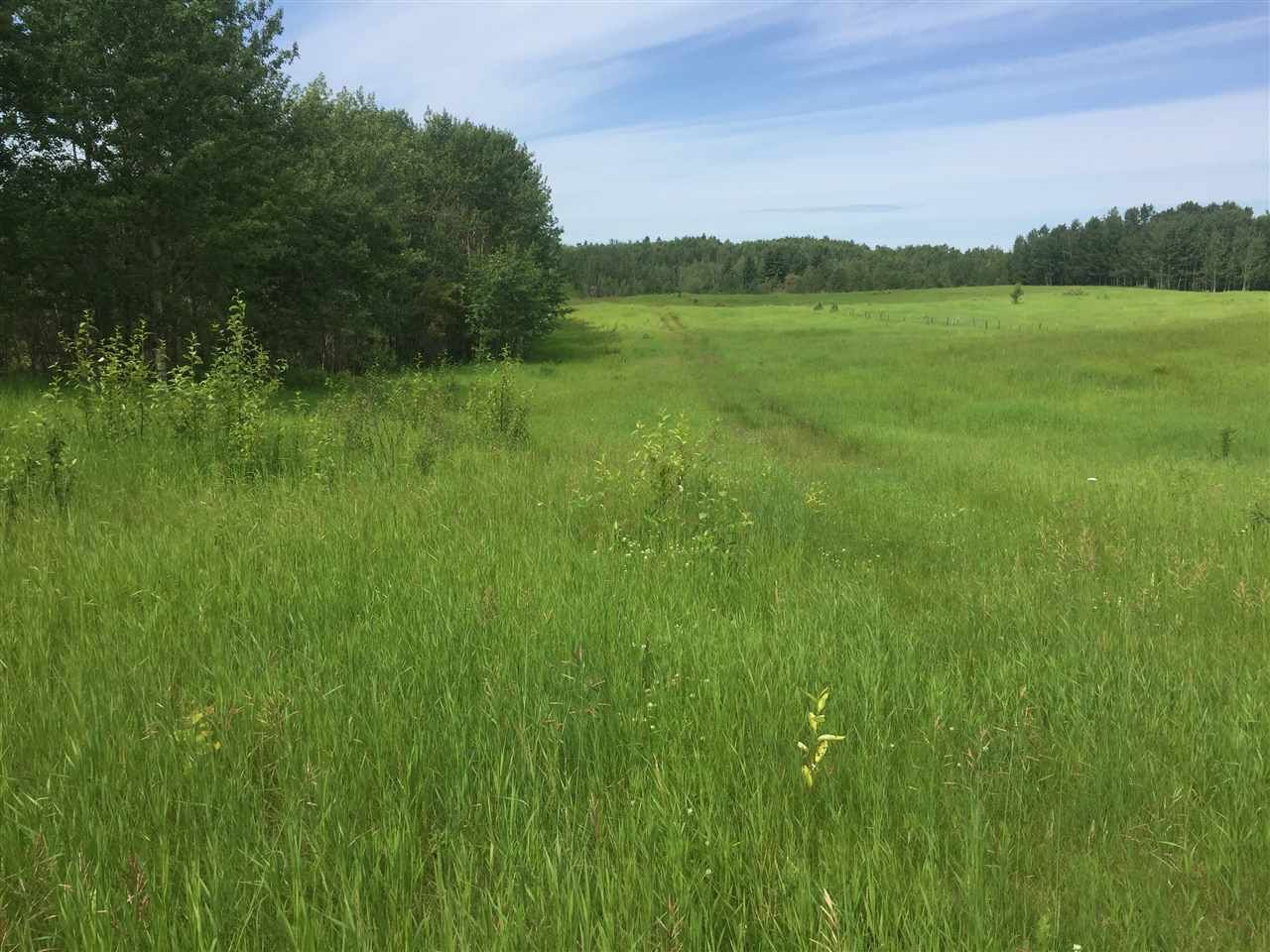 Main Photo: TWP RD 550 RGE RD 203: Rural Strathcona County Rural Land/Vacant Lot for sale : MLS®# E4220584