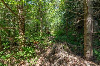 Photo 38: 2227 READ Crescent in Squamish: Garibaldi Estates House for sale : MLS®# R2570899