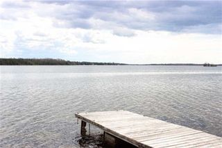 Photo 11: 243 Mcguires Beach Road in Kawartha Lakes: Rural Carden House (Bungalow) for sale : MLS®# X3453643