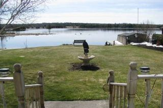 Photo 3: 197 Mcguires Beach Road in Kawartha L: House (Bungalow) for sale (X22: ARGYLE)  : MLS®# X1908746