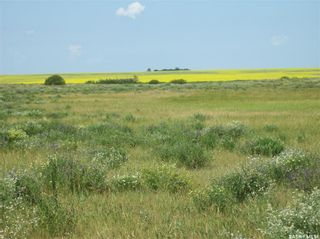 Photo 1: Eagle Creek Acreage 80 Acres in Asquith: Lot/Land for sale : MLS®# SK863384