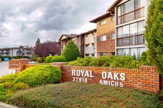 Main Photo: 306 32910 AMICUS Place in Abbotsford: Central Abbotsford Condo for sale : MLS®# R2581092