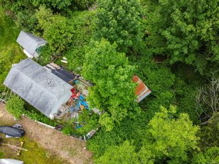 Photo 14: 815 Homewood Rd in : CR Campbell River Central House for sale (Campbell River)  : MLS®# 876600
