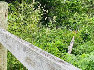 Photo 19: 3736 James Cres in : CV Merville Black Creek Land for sale (Comox Valley)  : MLS®# 877899