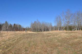 Photo 34: 10 57126 Range Road 12: Rural Barrhead County Rural Land/Vacant Lot for sale : MLS®# E4241768