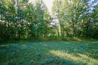 Photo 15: 1857B Highway 602 HWY in Fort Frances: Vacant Land for sale : MLS®# TB212603