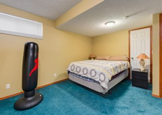 Photo 27: 14 Royal Birch Grove NW in Calgary: Royal Oak Detached for sale : MLS®# A1073749